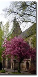 St. Martini Stadthagen